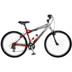 Bike - Adult Mountain Bike