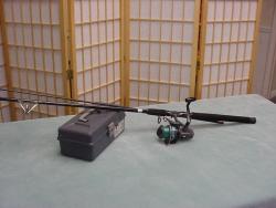 Saltwater fishing rod
