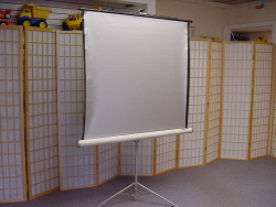 "Projector Screen 48"" diagnonal, 3 ft square Screen"
